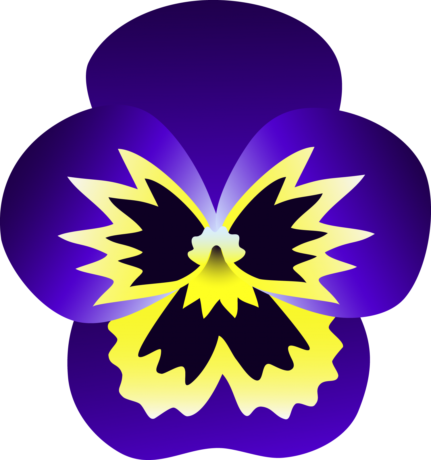 cropped-pansy.png