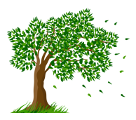 Tree_Transparent_Clipart_Picture