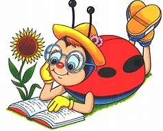 lady bug book