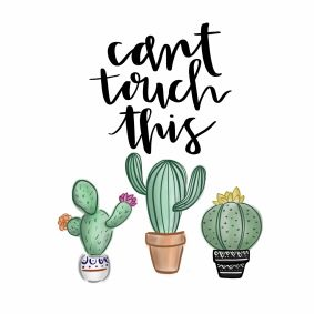 Cactus cant touch this
